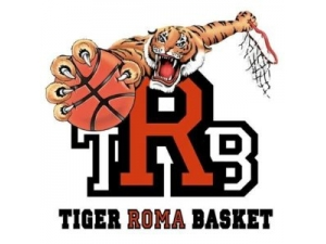 TIGER ROMA BASKET
