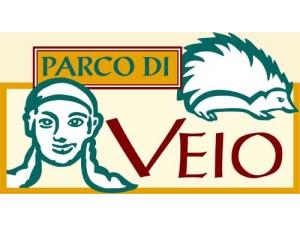 BASKET PARCO DI VEIO CAMPAGNANO DI ROMA